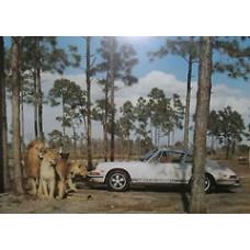 Porsche Poster 1968 911 Safari